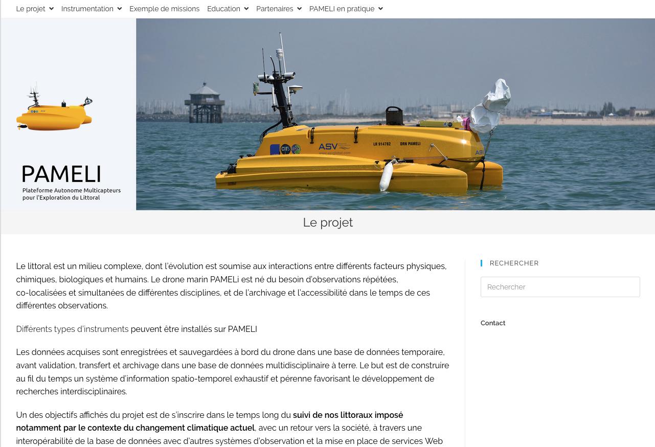 """Creation of """"PAMELi website"""""""